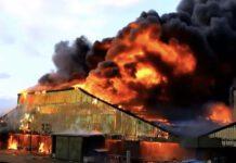 Ook dieren hebben recht op een brandveilige stal