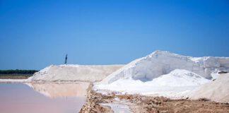 Met de afspraken werd bereikt dat een volwassen Nederlanders een snufje minder zout per dag binnenkrijgt.(Foto Richard Chalmers via Pixabay}