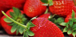 Aardbeien worden volgens de NVWA tot zes keer zoveel gespoten als ander fruit. (Foto pasja1000 via Pixabay)
