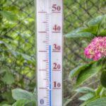 Wakker Dier pleit voor een hitteplan waarbij een maximale temperatuur van 27 graden geldt in de stal en een verbod op transport boven de 27 graden. (Foto Thomas Wolter via Pixabay)